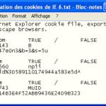 Supprimer les Cookies dans Internet Explorer 6